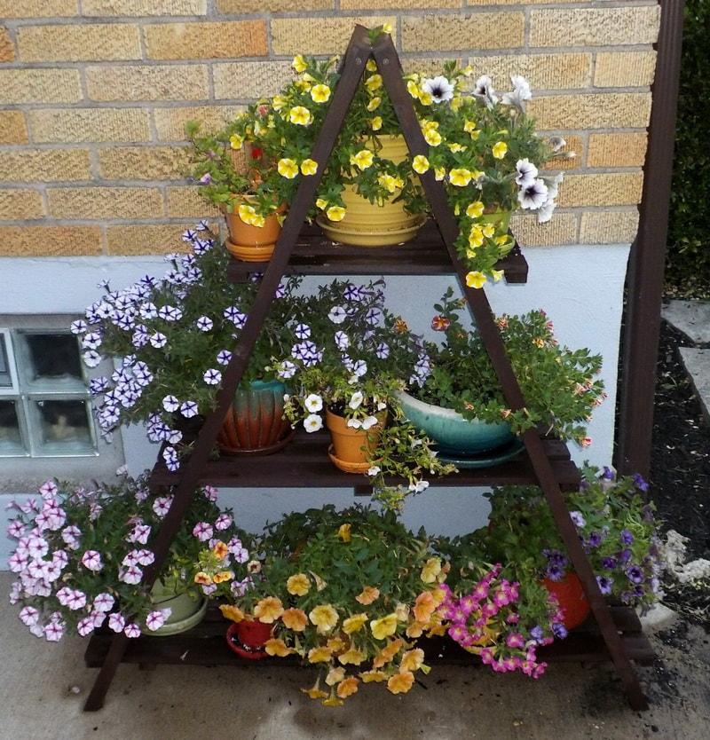 украшение двора цветами фото остаться